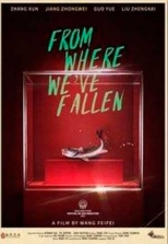 From Where We've Fallen