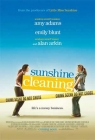 Sunshine Cleaning (2010) T2_2898