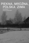A Beautiful, Freezing, Polish Winter